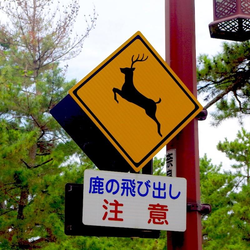 奈良公園内の標識