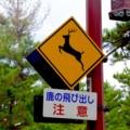 [風景写真]奈良公園内の標識