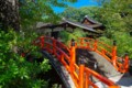 [風景写真]下鴨神社