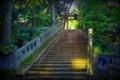 [風景写真]赤坂氷川神社