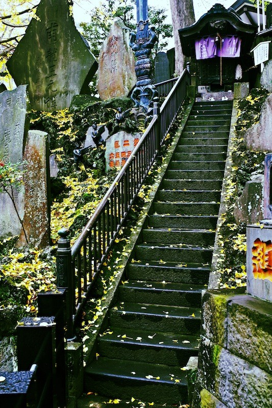 成田山新勝寺の階段