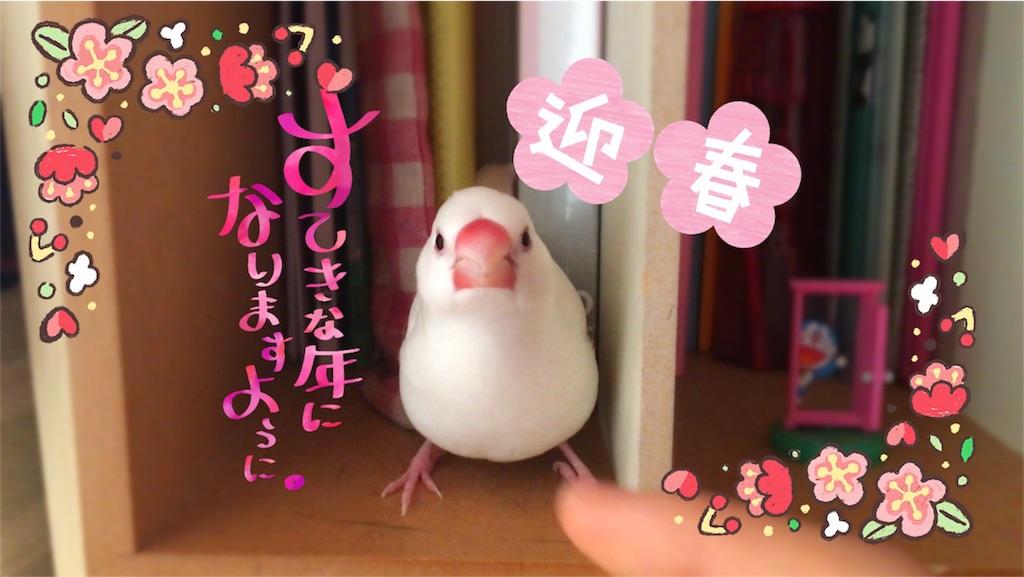 f:id:yukinkopii:20180109024723j:image
