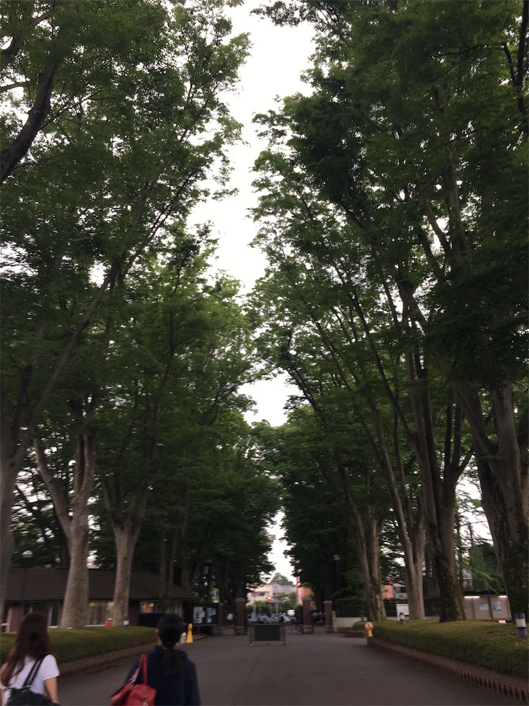 f:id:yukinkosan:20170627171702j:image