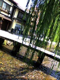 f:id:yukinohime:20080705144635j:image