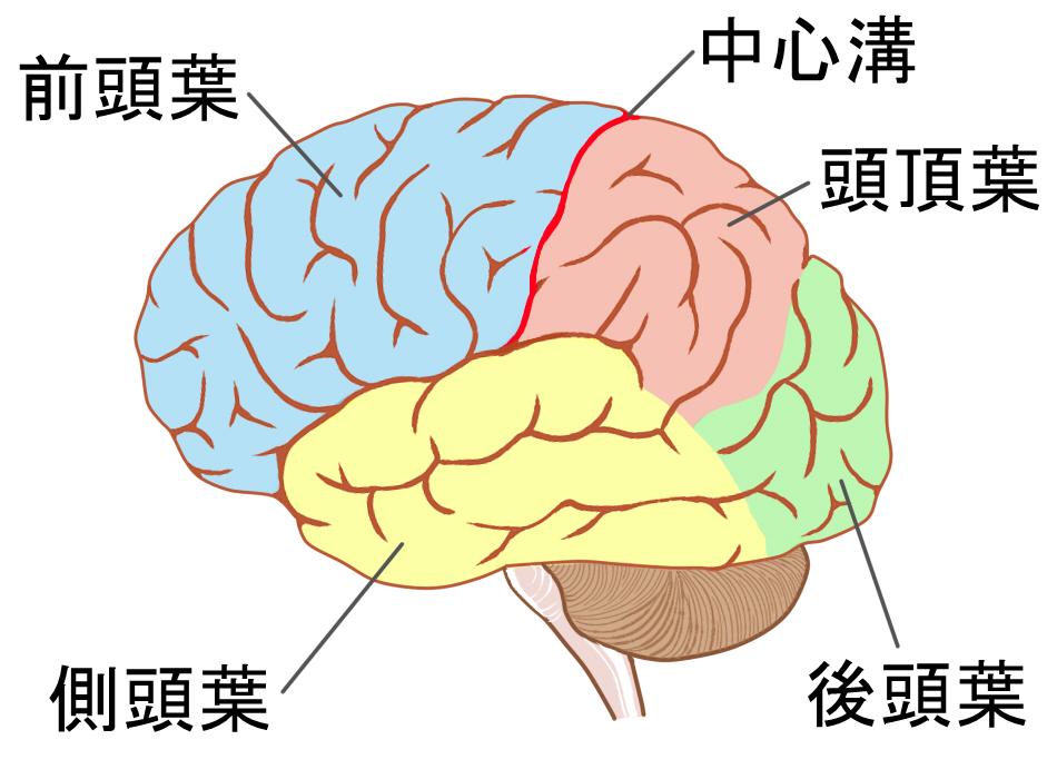 f:id:yukinohini-yusa:20200320025109j:plain