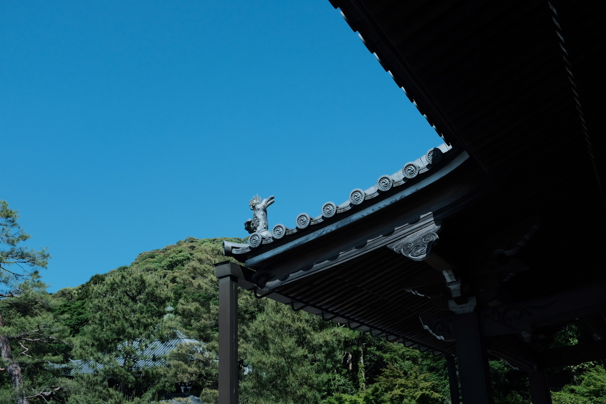 f:id:yukinohini-yusa:20200508144905j:plain