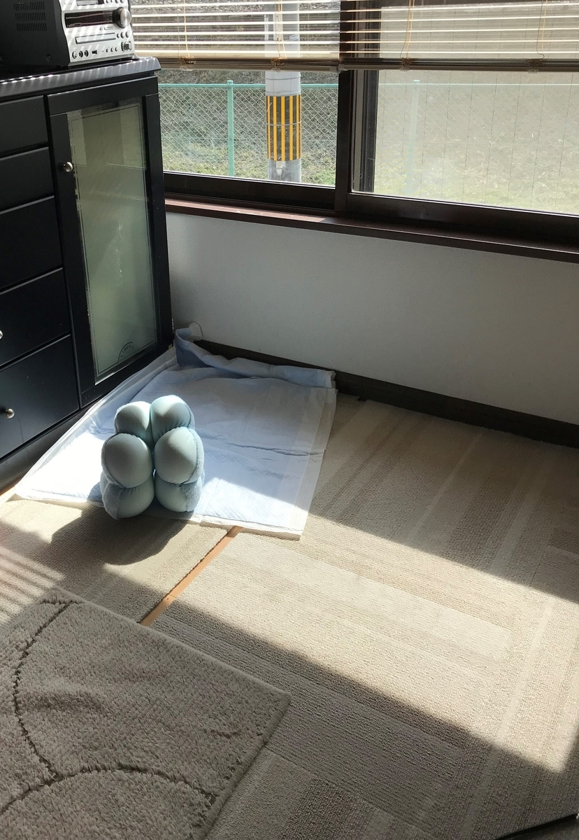 f:id:yukinon28:20200216171037j:plain