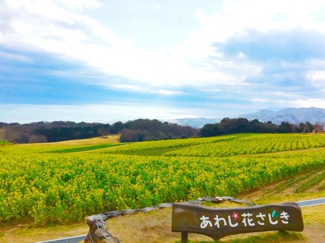 f:id:yukinon28:20200318142901j:plain