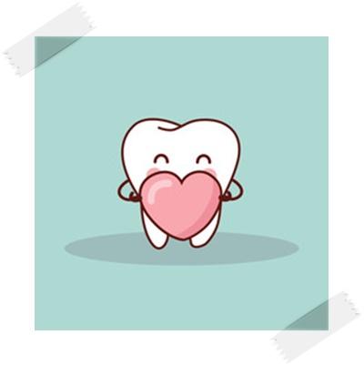かわいい歯のイラスト