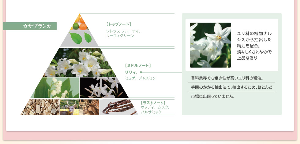 ユリの香りの変化
