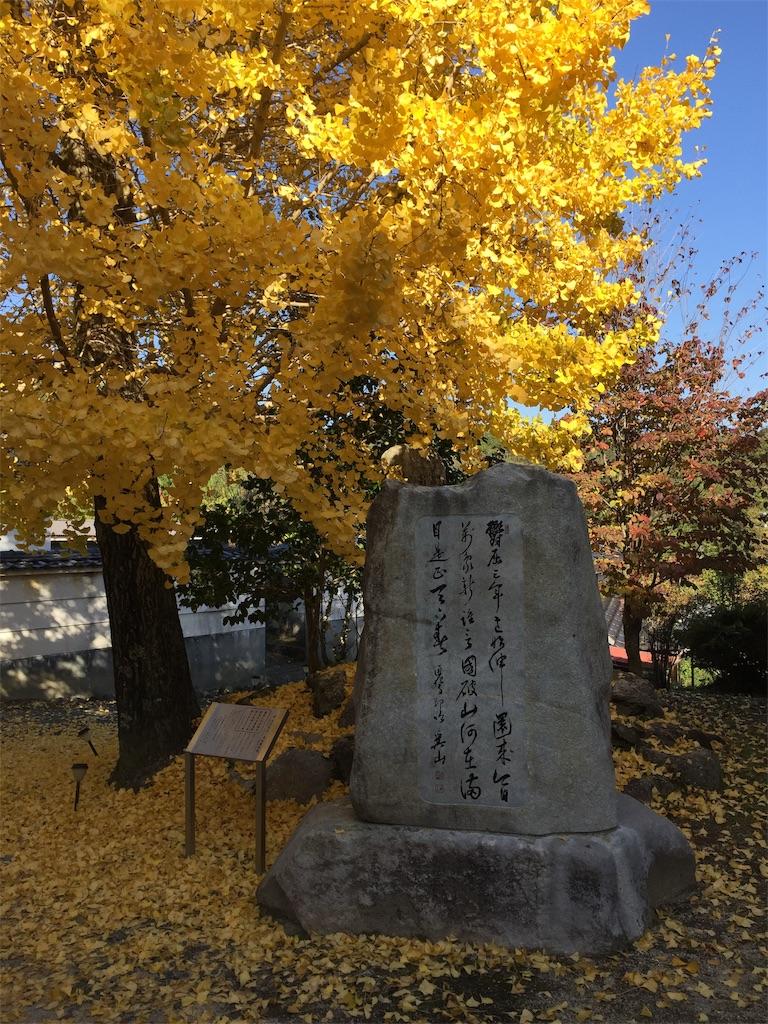 f:id:yukinosita-tamasudare:20201108173549j:image