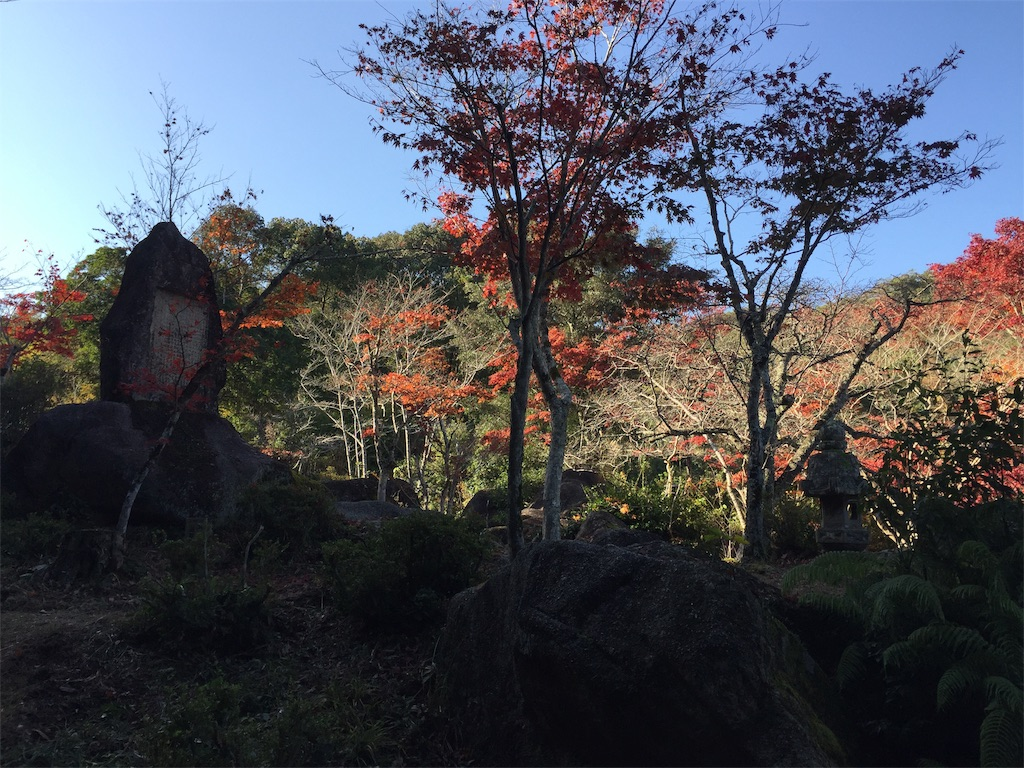 f:id:yukinosita-tamasudare:20201108174329j:image