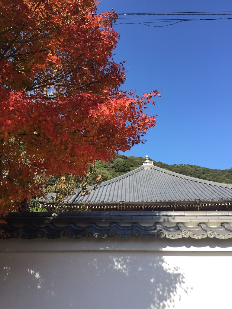 f:id:yukinosita-tamasudare:20201114164000j:image