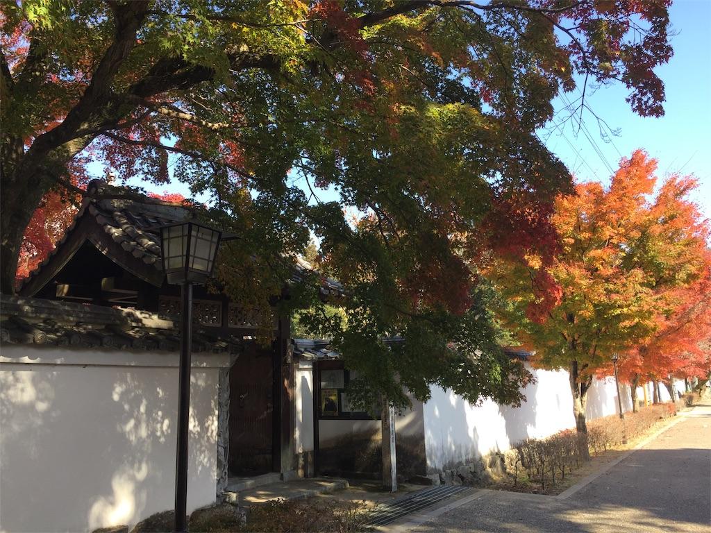f:id:yukinosita-tamasudare:20201114175723j:image
