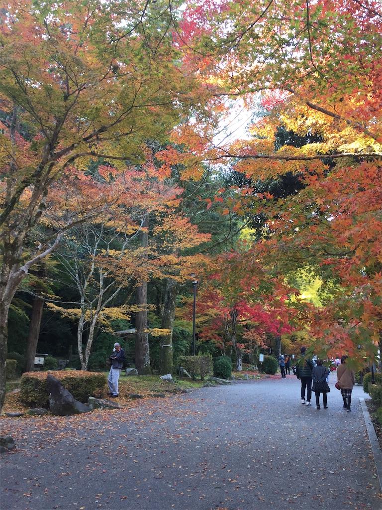 f:id:yukinosita-tamasudare:20201114180242j:image