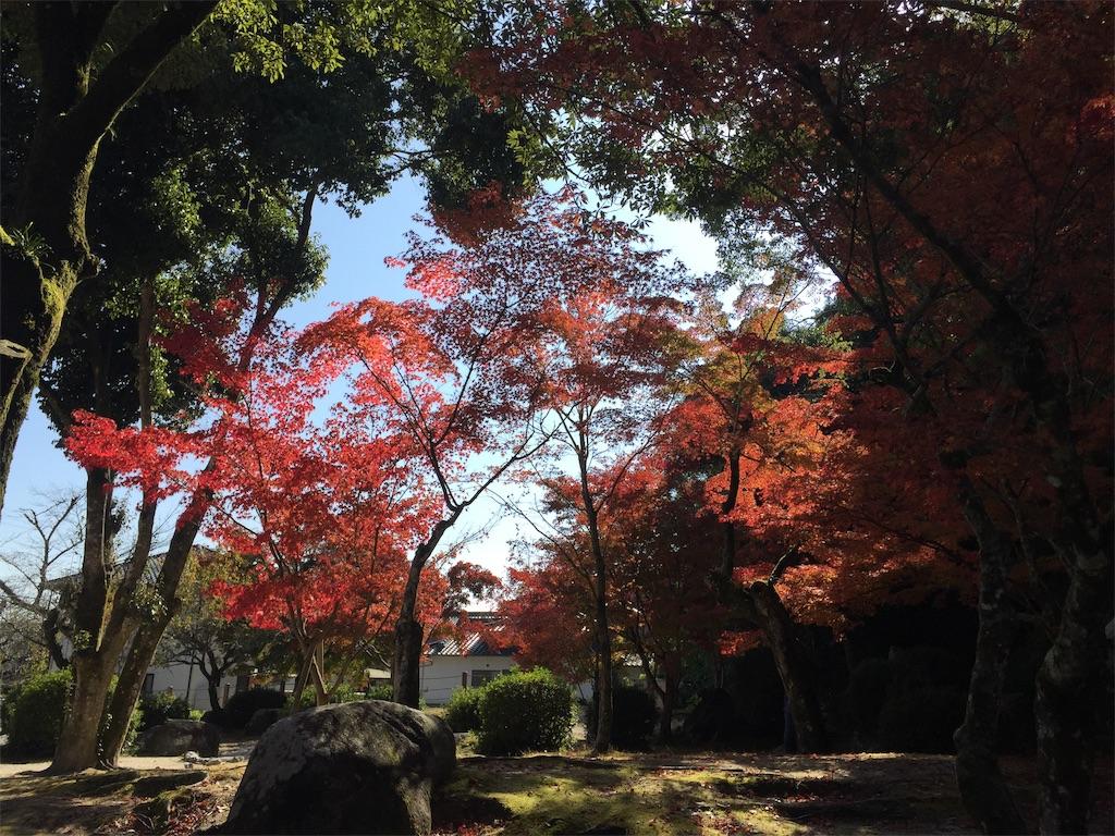f:id:yukinosita-tamasudare:20201115154209j:image