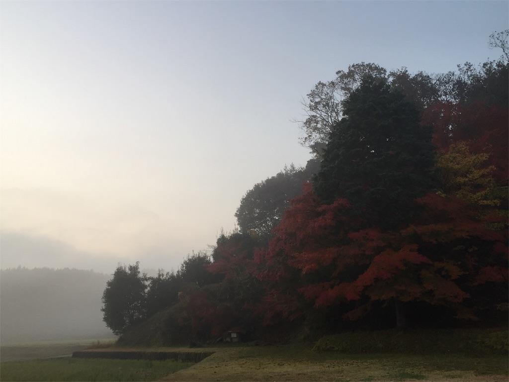 f:id:yukinosita-tamasudare:20201118094156j:plain