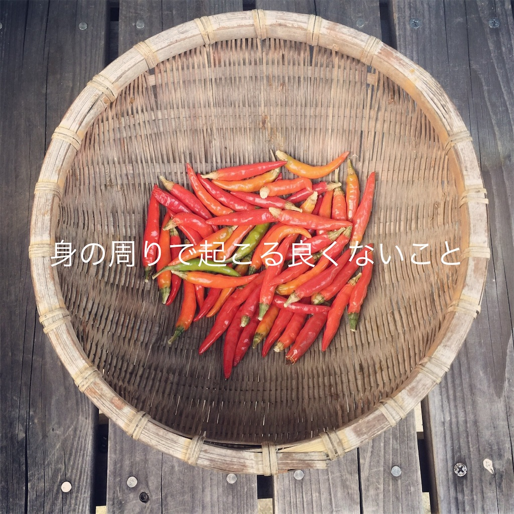 f:id:yukinosita-tamasudare:20210114205533j:image