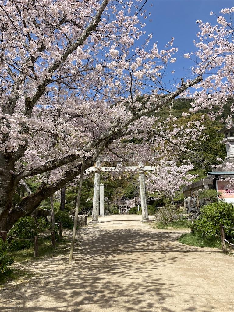 f:id:yukinosita-tamasudare:20210331130230j:image