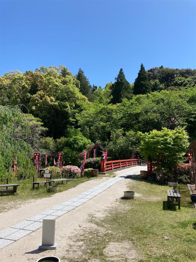 f:id:yukinosita-tamasudare:20210425231727j:image