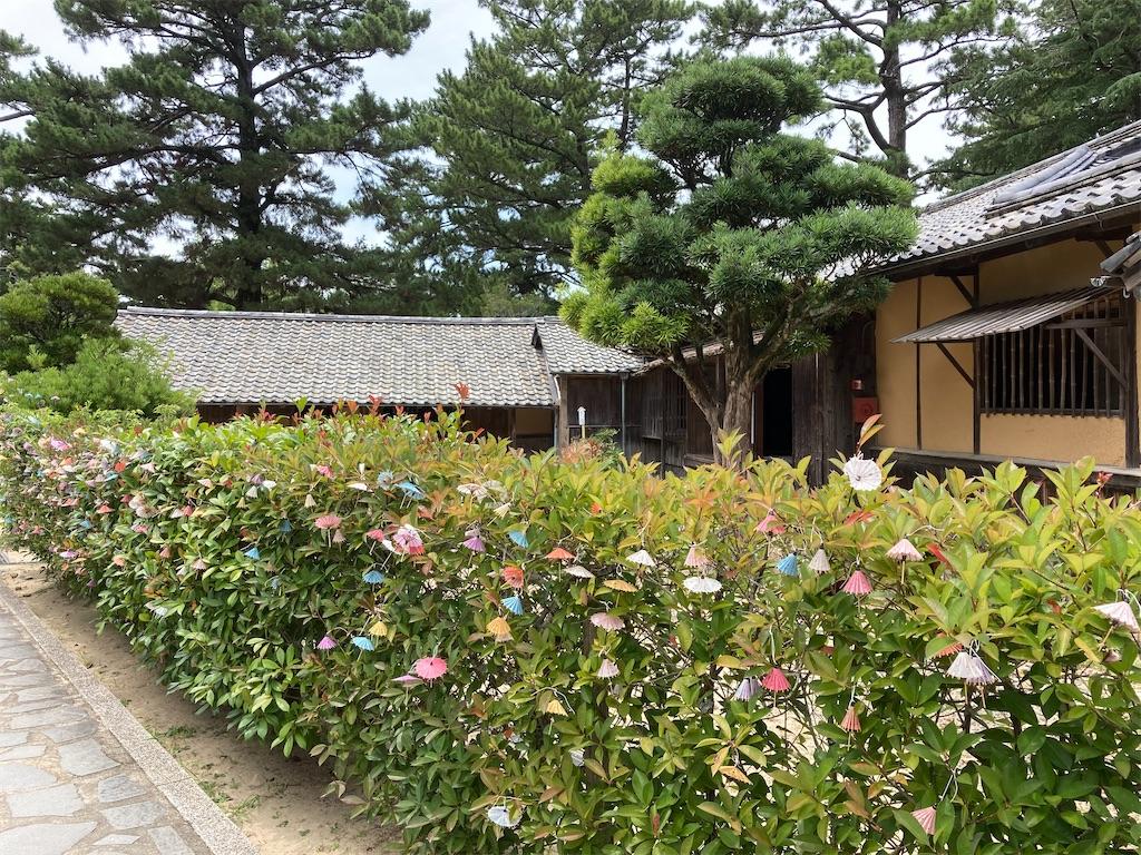 f:id:yukinosita-tamasudare:20210727180241j:image