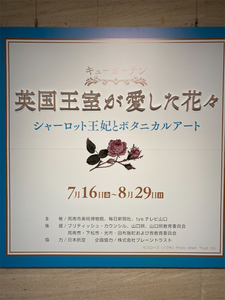 f:id:yukinosita-tamasudare:20210813212929j:image