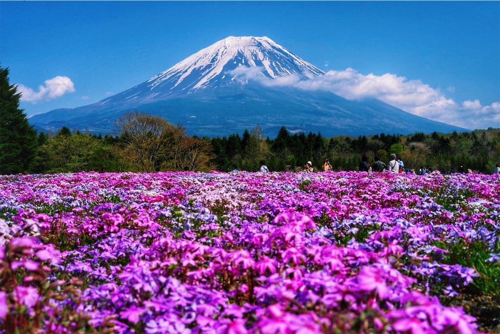 f:id:yukionoda:20190329151437j:image