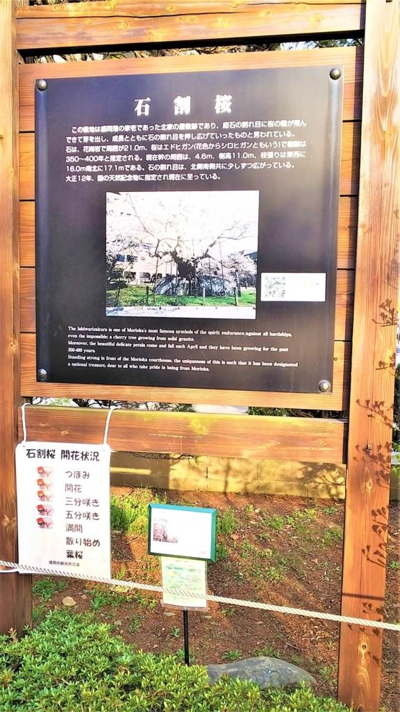 石割桜の案内板の画像