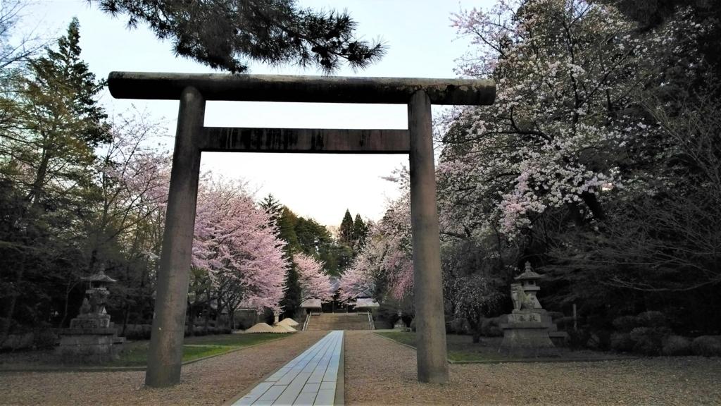 岩手護国神社境内の桜の画像