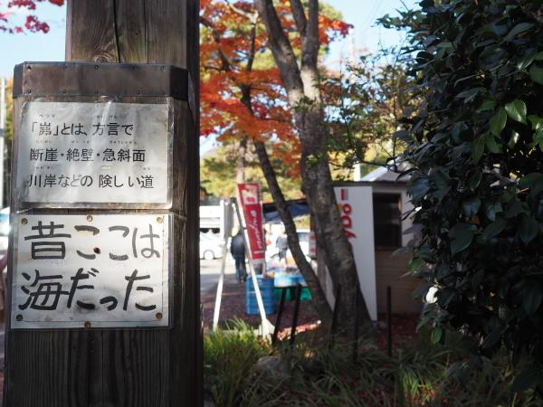 f:id:yukisigekuni:20181111004741j:plain