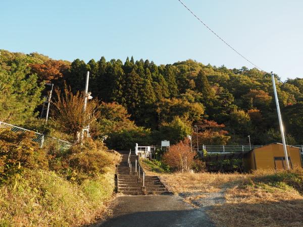 f:id:yukisigekuni:20181117214037j:plain