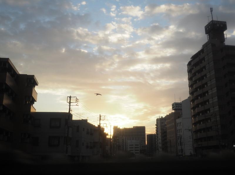 f:id:yukisigekuni:20181228225440j:plain