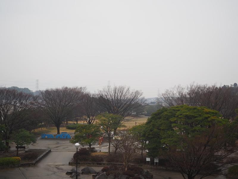 f:id:yukisigekuni:20190317002014j:plain