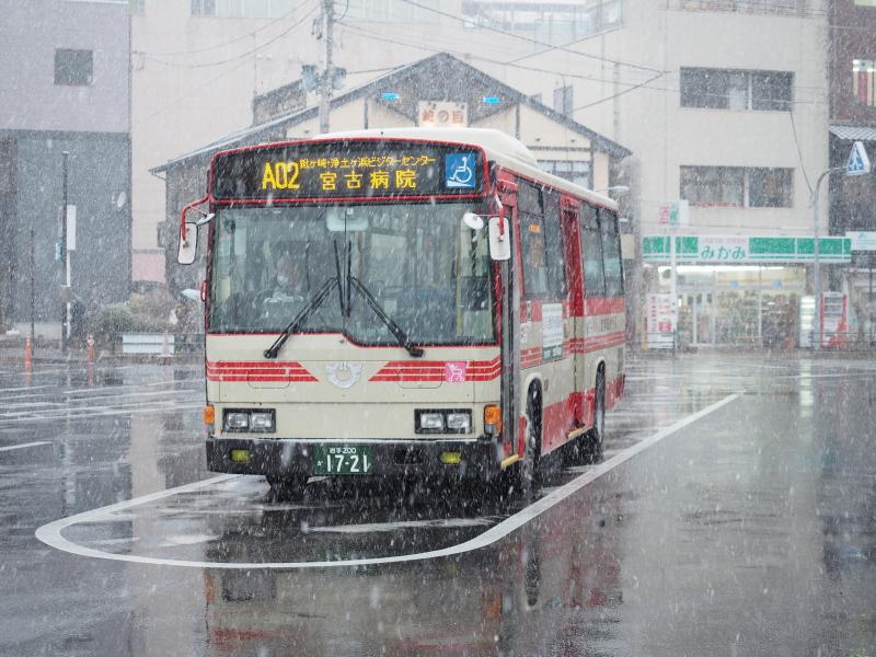 f:id:yukisigekuni:20190412225133j:plain