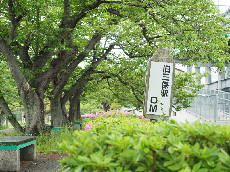f:id:yukisigekuni:20190508233811j:plain