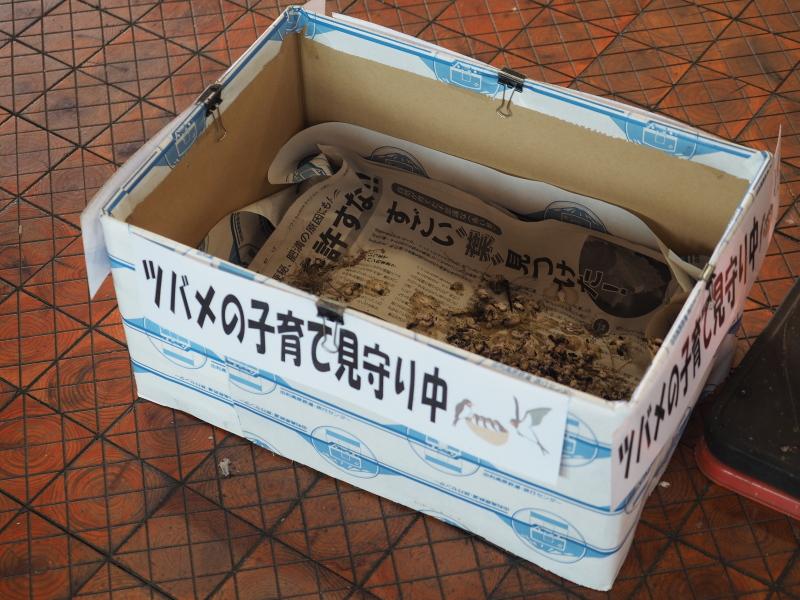 f:id:yukisigekuni:20190825002015j:plain
