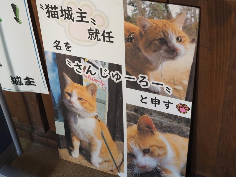 f:id:yukisigekuni:20190917080548j:plain
