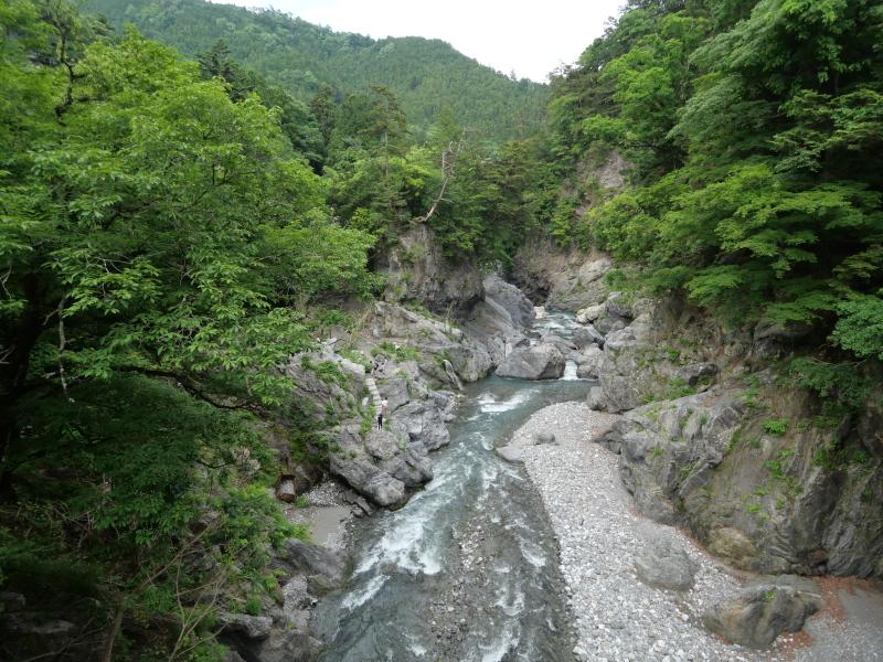 f:id:yukisigekuni:20200605215338j:plain