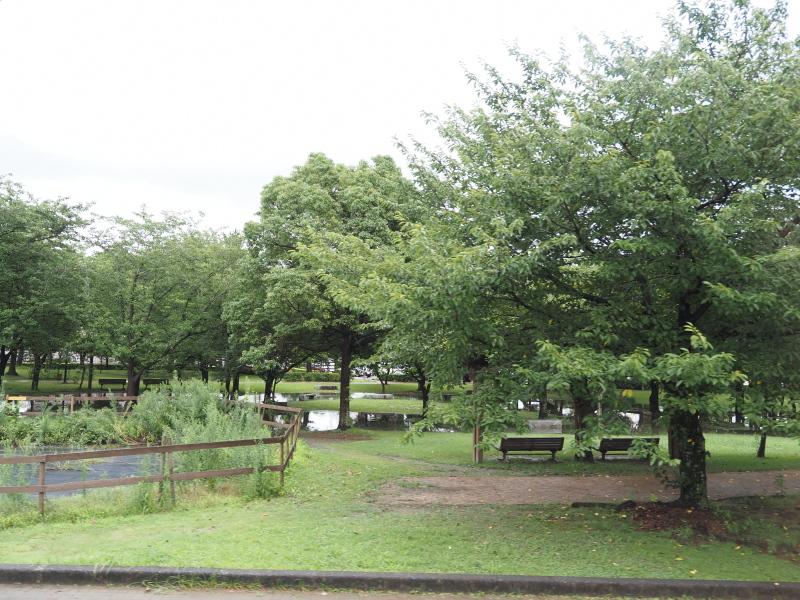 f:id:yukisigekuni:20200815214138j:plain