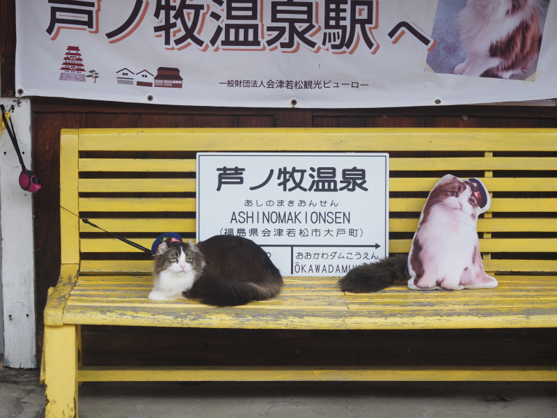 f:id:yukisigekuni:20200830225148j:plain