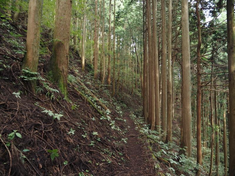f:id:yukisigekuni:20201017125033j:plain