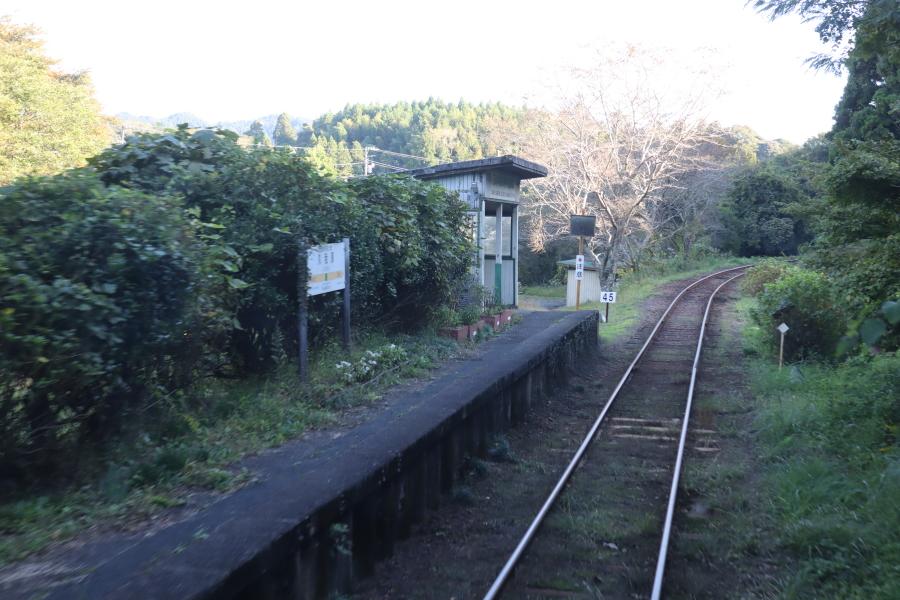 f:id:yukisigekuni:20201112224708j:plain