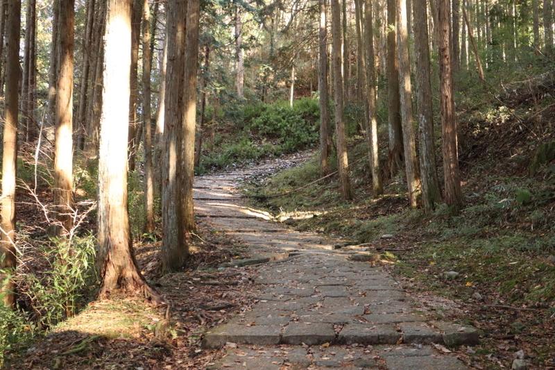 f:id:yukisigekuni:20201229101744j:plain
