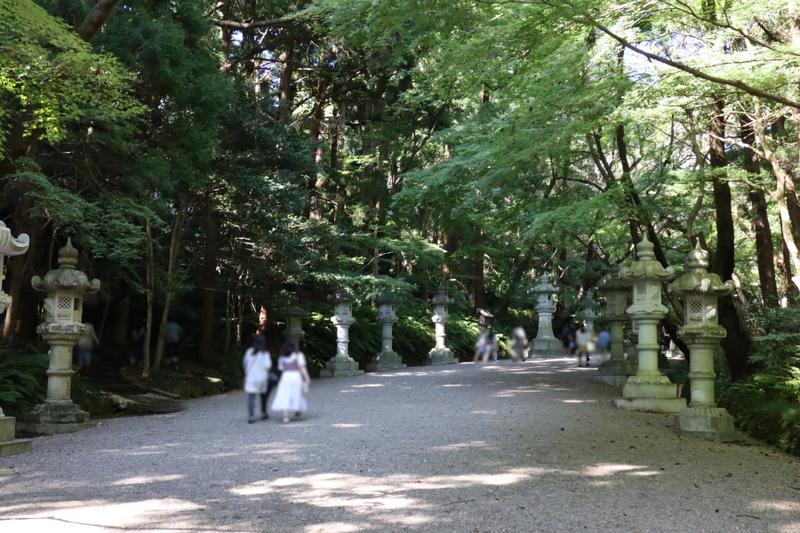 f:id:yukisigekuni:20211012213012p:plain