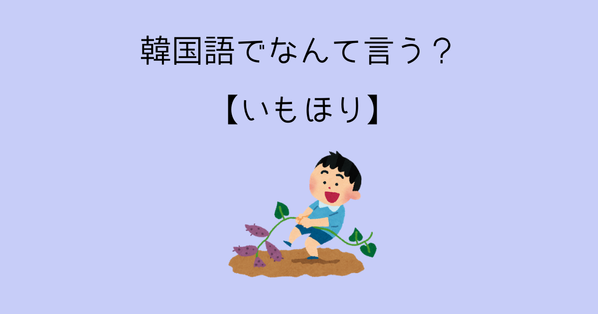 f:id:yukitaemaron:20210506165735p:plain