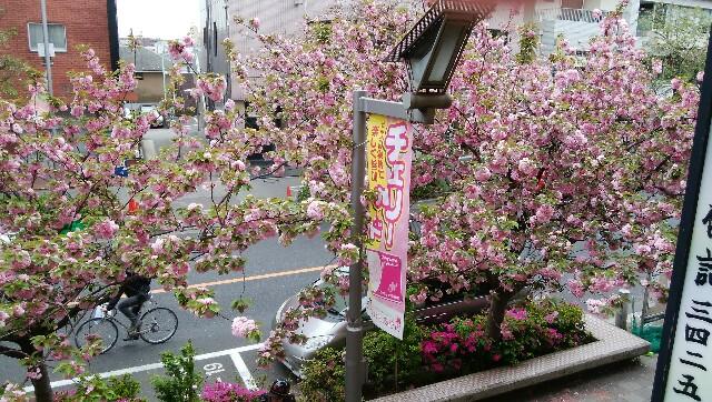 f:id:yukitono:20170421183107j:image
