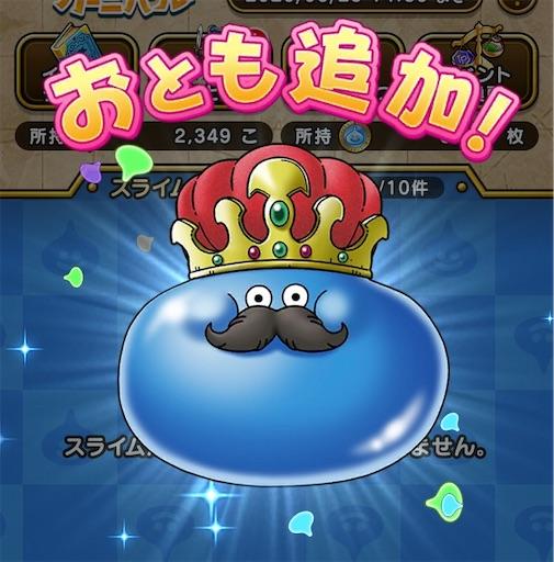 f:id:yukitosakuraisuper:20200530214629j:image