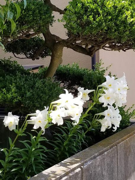 f:id:yukiusagi-home:20190911132912j:plain