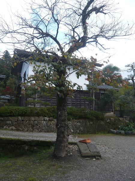 f:id:yukiwarisou_0222:20191112121634j:plain