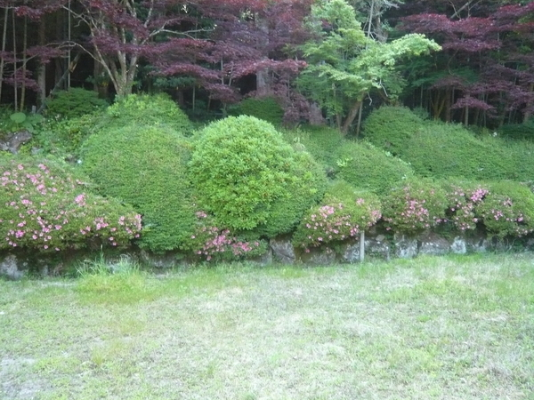 f:id:yukiwarisou_0222:20200609105735j:plain